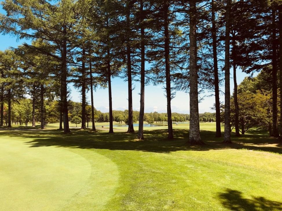 f:id:golf_samurai11:20190628181317j:plain