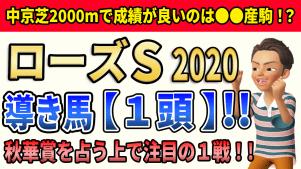 f:id:jikuuma:20200915081112p:plain