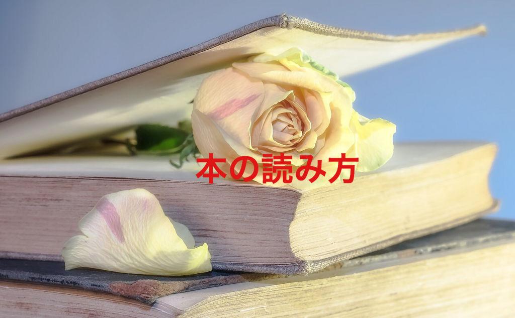 f:id:kazu532120:20180428070212j:plain