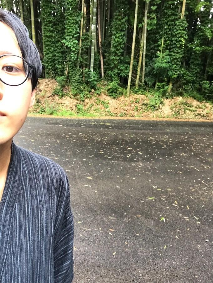 f:id:kazukiiyomasa:20170817092912j:plain