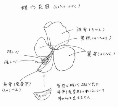 f:id:kyou2:20160213142813j:image:w400
