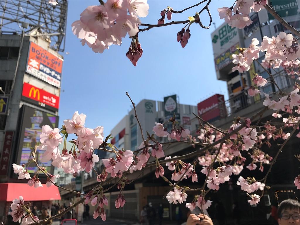 f:id:mika-shimosawa:20170314205012j:image