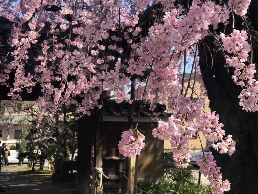 f:id:mika-shimosawa:20170413192435j:image
