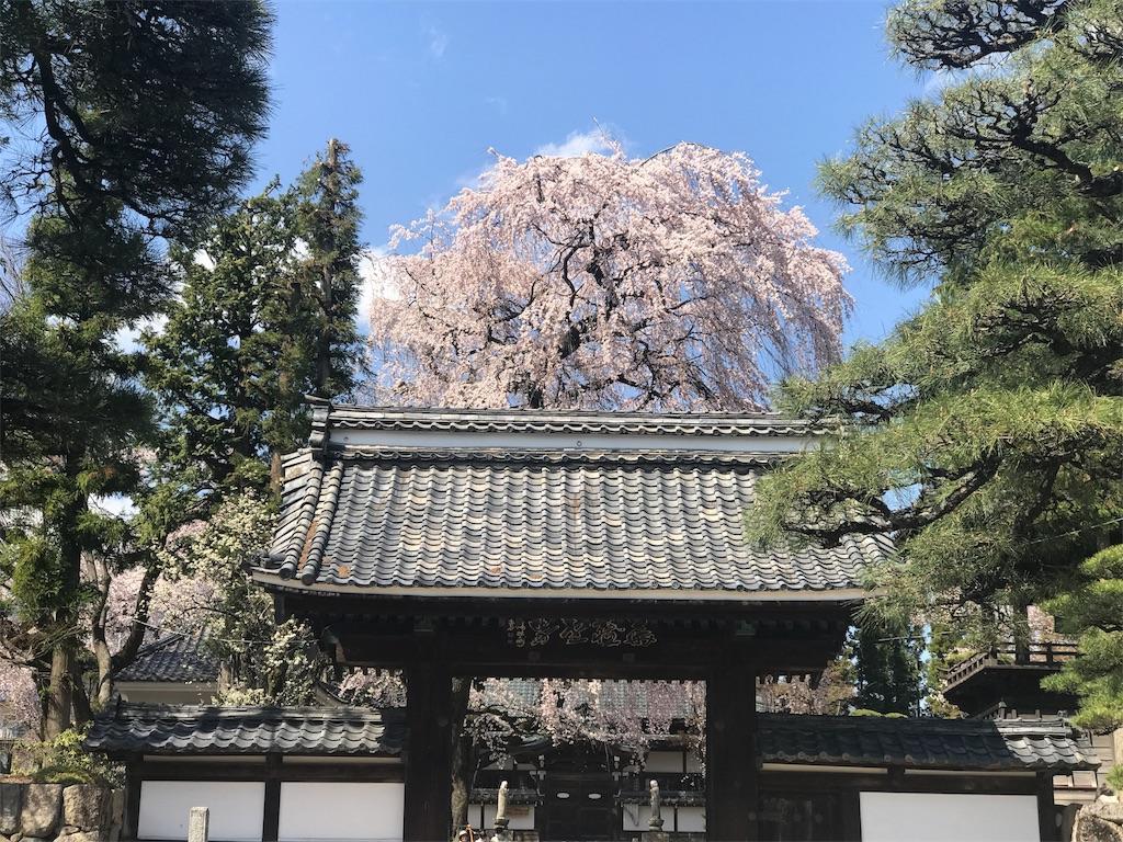 f:id:mika-shimosawa:20170418162934j:plain