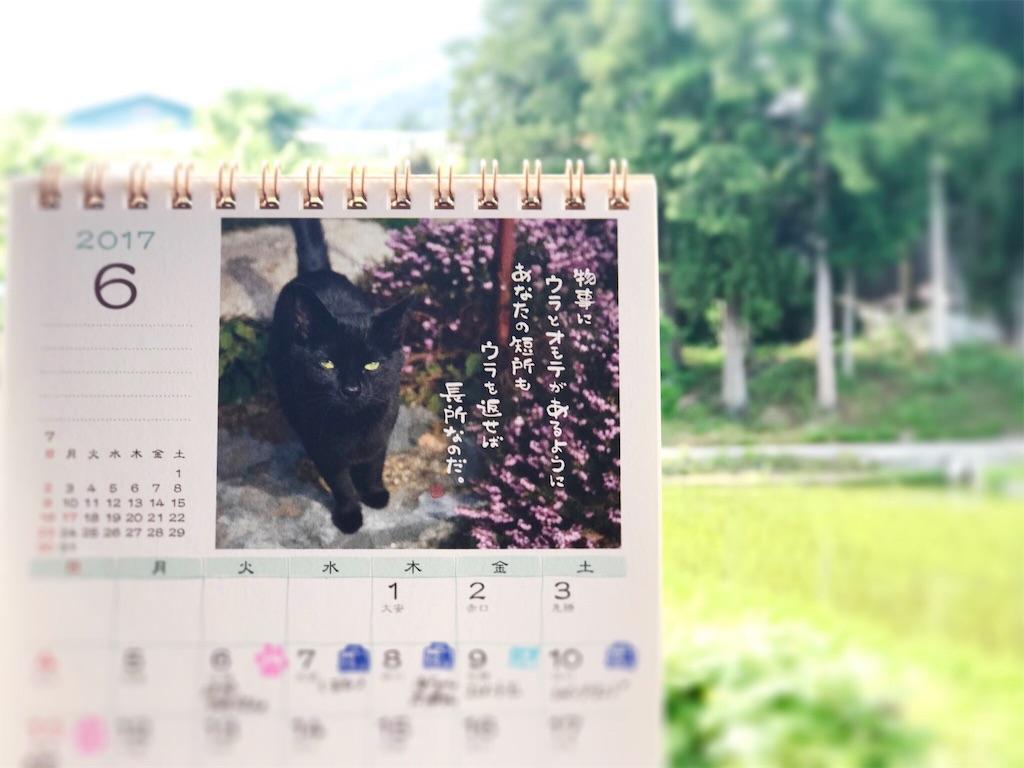 f:id:mika-shimosawa:20170601153143j:image