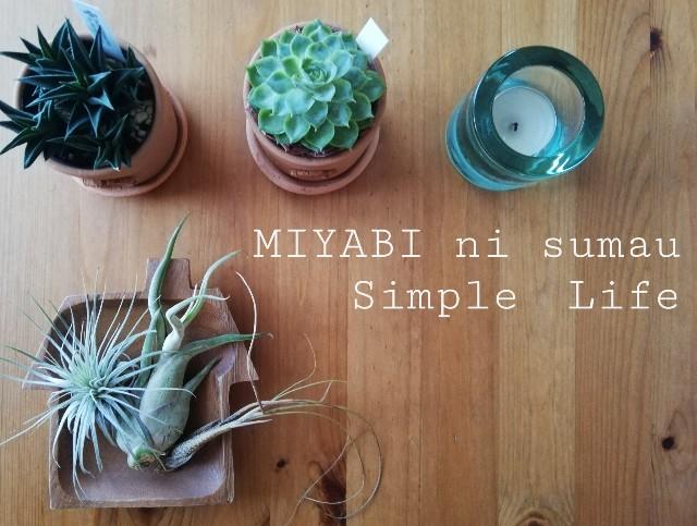 f:id:miyabi_luna:20190830110026j:image