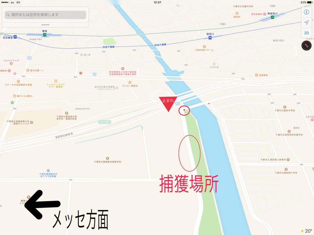 f:id:saekichi:20170502140558j:plain
