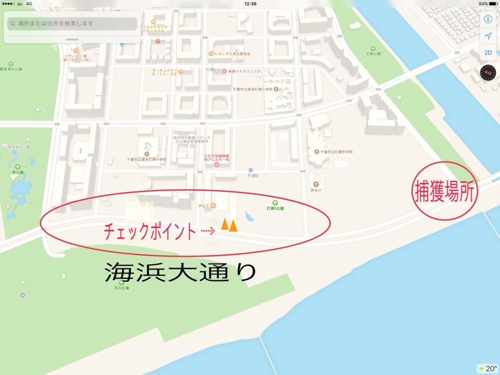 f:id:saekichi:20170502145104j:plain