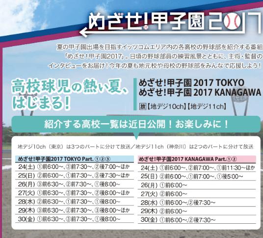 f:id:summer-jingu-stadium:20170531210944p:plain