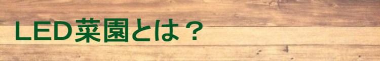 f:id:tsuritsuri:20190216234019j:plain