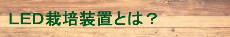 f:id:tsuritsuri:20190217001323j:plain