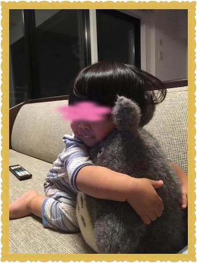 f:id:uchinokosodate:20180406100918j:image