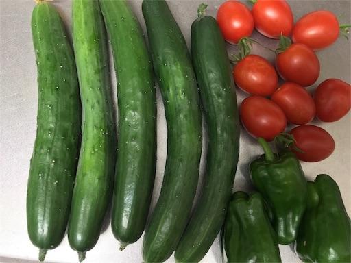今朝収穫した野菜たち、きゅうりをぬか漬けします。