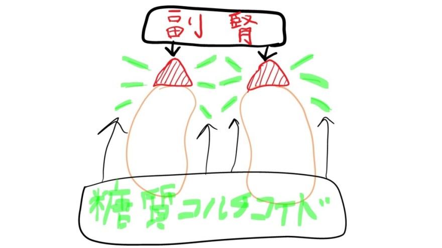 f:id:yoshimatsutakeshi:20160515213827j:plain