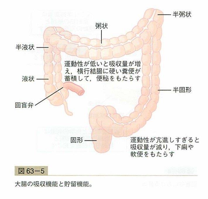 f:id:yoshimatsutakeshi:20160713151051j:plain
