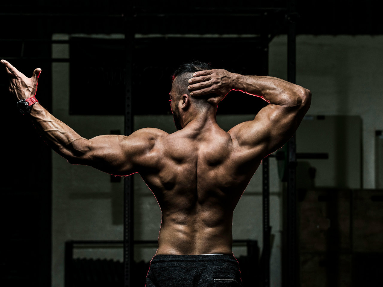 The 30 Minute Big Back Workout Routine
