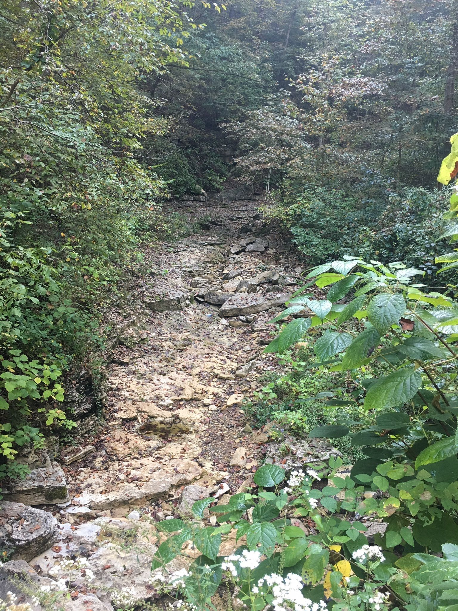 Walking Trails Kentucky Handicapped Accessible