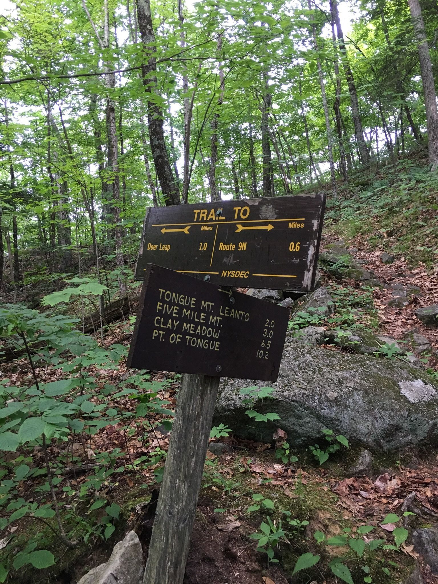Five Mile Mountain Trail