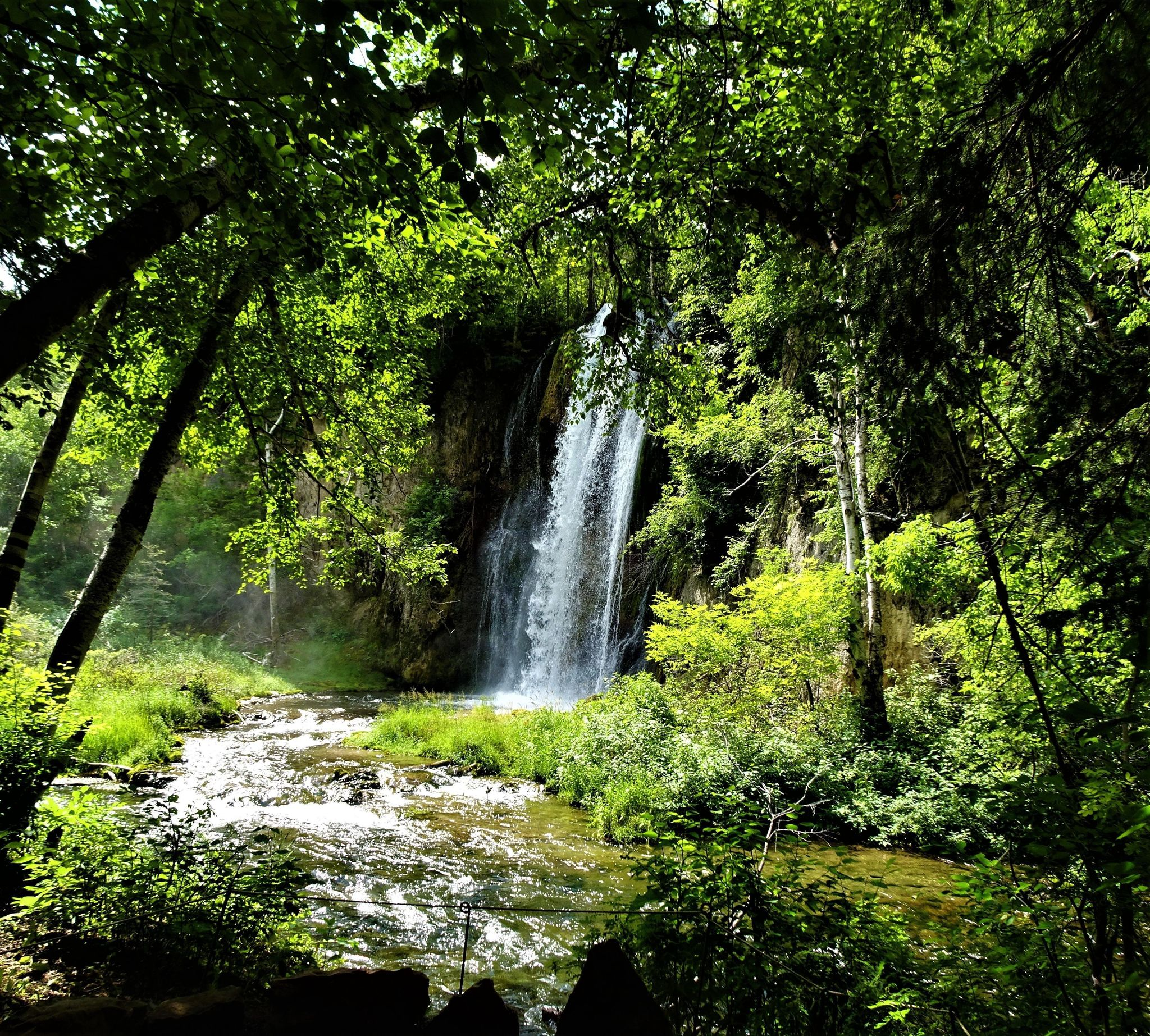 Spearfish Canyon Floor Nature Hiking Trail