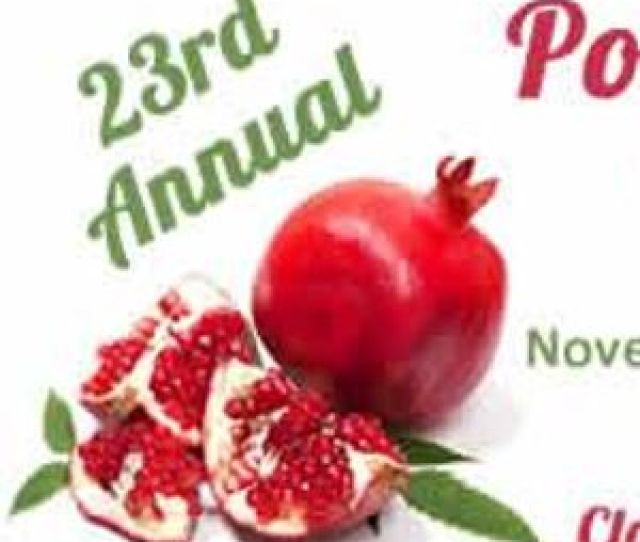 Pomegranate Festival In Logandale