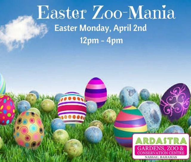 Easter Zoo Mania