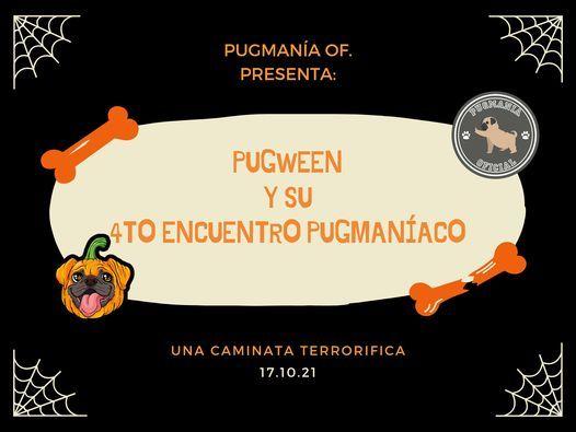 PugWeen y su 4to Encuentro PugManíaco, 17 October | Event in San Miguel De Allende | AllEvents.in