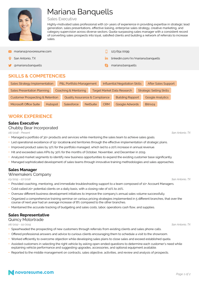 Sales Resume - Example & Writing Guide for 14