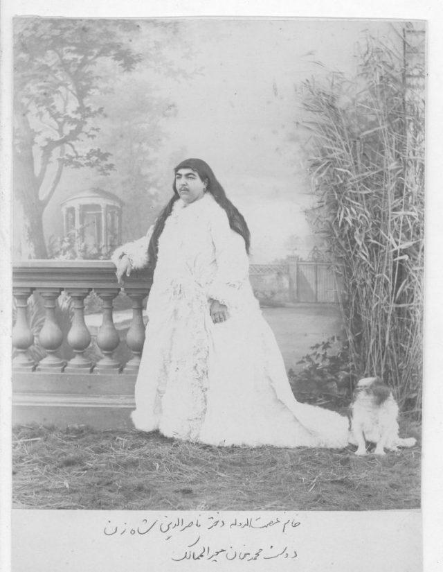 Fake History Meme Of Princess Qajar