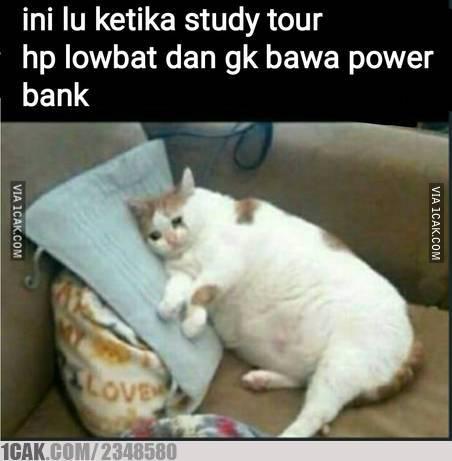 meme study tour © Berbagai Sumber