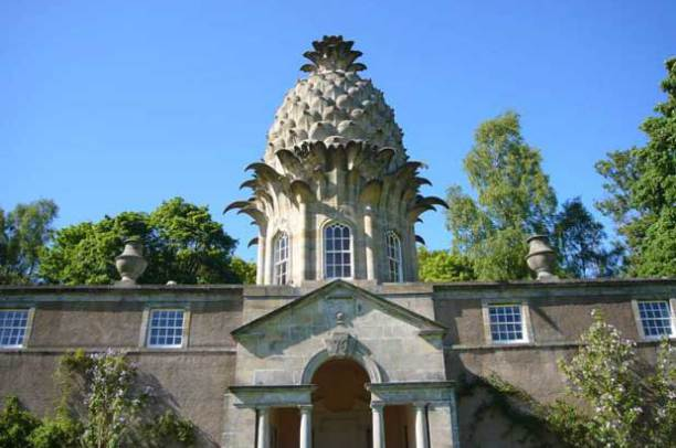 The Pineapple, Dunmore Source:Taffy van Doorn