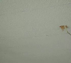 When Did They Stop Putting Asbestos In Popcorn Ceilings Canada Www