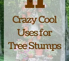 11 Pictures Of Crazy Cool Uses For Tree Stumps Hometalk