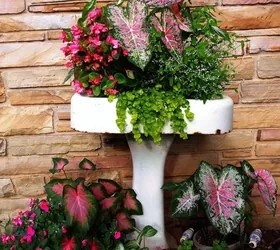 Tall Flower Planters