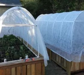 Build Vegetable Garden Box