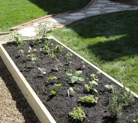 Raised Vegetable Garden Diy
