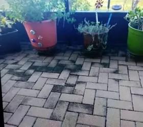 how do i clean brick pavers on an