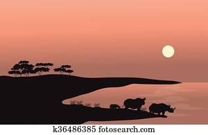 Download Two rhinoceros Stock Image   k0083303   Fotosearch
