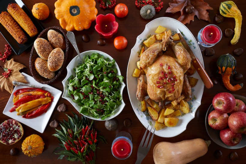 All Your Most Pressing Thanksgiving Questions Answered