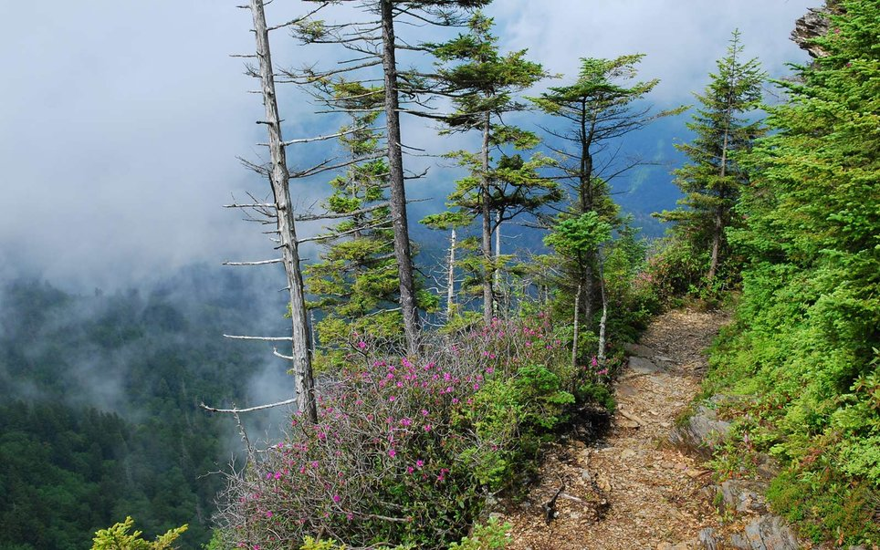 16. Great Smoky Mountains National Park