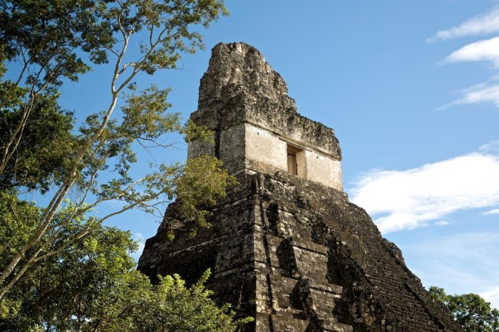 Central and South American Ruins Image: One of Tikal's structures is reaching past the jungle canopy and into the sky.