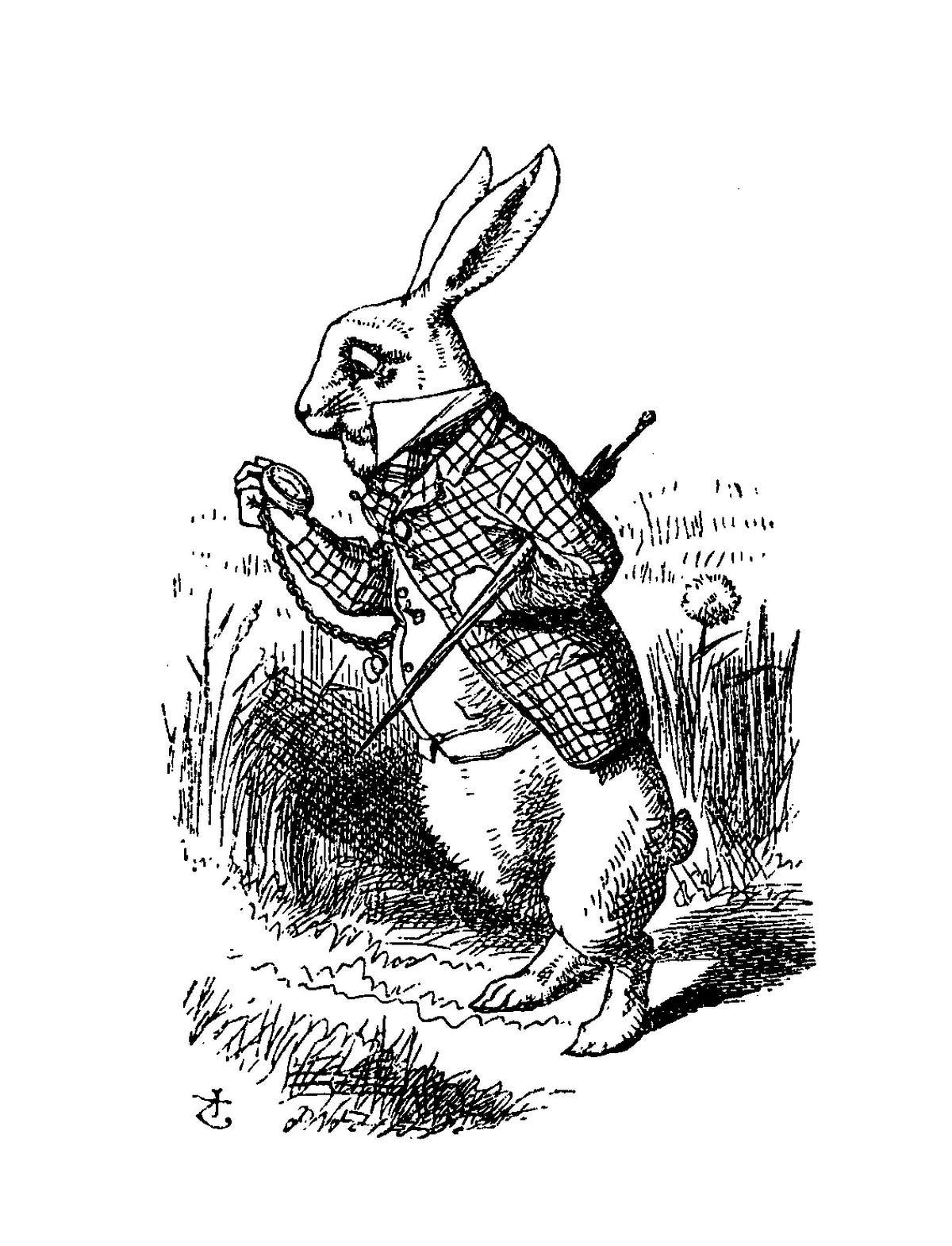 Down The Rabbit Hole Alice S Adventures In Wonderland