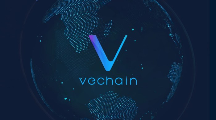 Image result for vechain