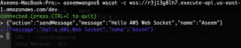 send Message Handler and AWS….