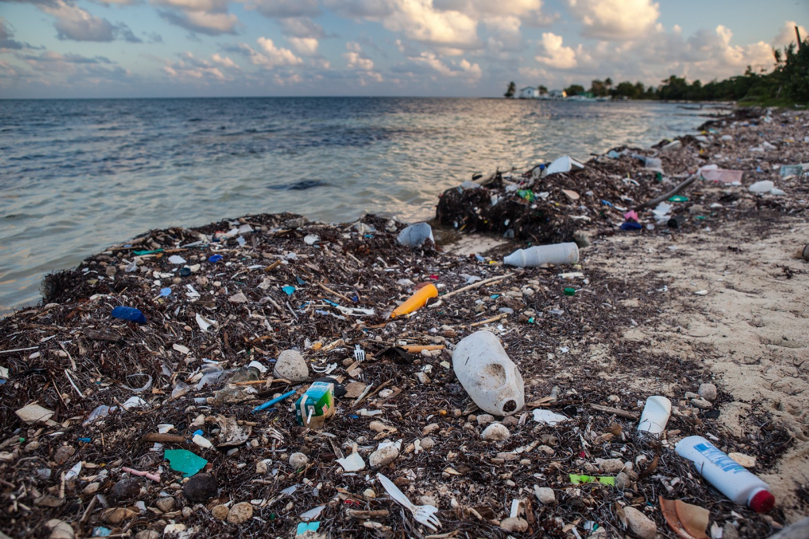 200 Countries Call For End To Plastic Pollution As You Sow