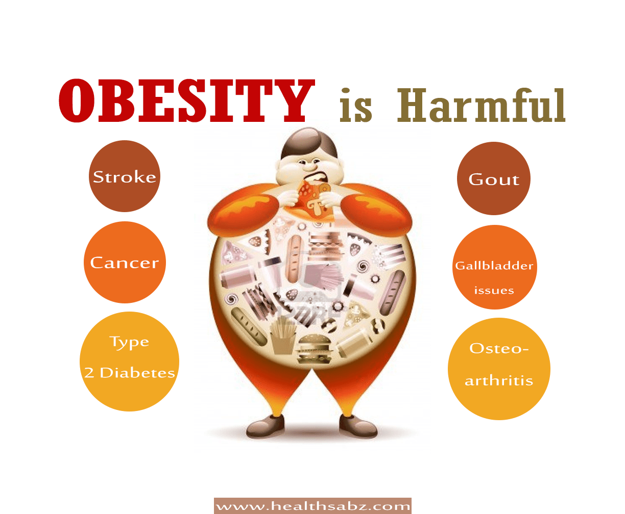 Obesity Is Harmful For You In Many Ways Christie D Soza Medium