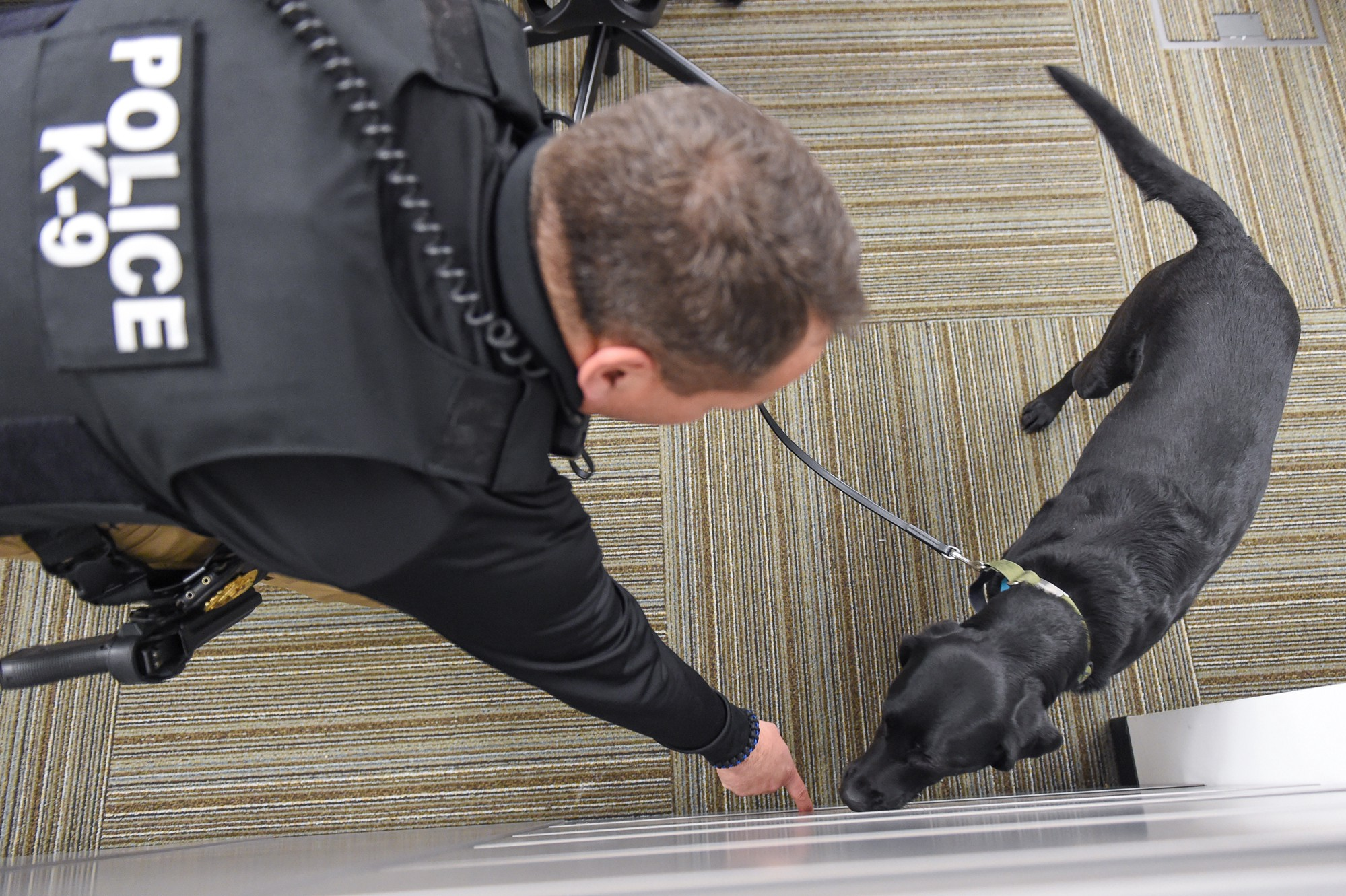 A Day In The Life Of Nga S Explosives Detection K 9 Teams