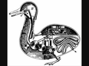 automata duck