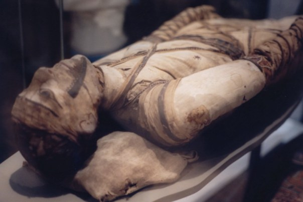 Traces of toxic mold and fungus has been found on Egyptian mummies (credit: Klafubra/wiki)