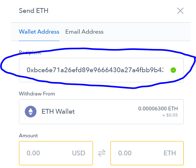 cryptocurrency wallet address