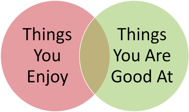 A image saying the comparison between the thing that you enjoy and the thing you are good at.